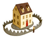 House in a Bear Trap